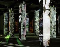 Symbiose / video installation