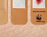 WWF | Animal Skin Band-Aid