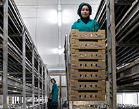 Le Commerce du Levant - Special Zahlé