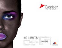 Graniser 2011 General Catalog Concept