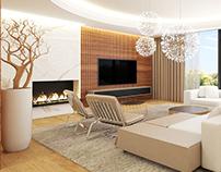 Condominium #living room #minotti