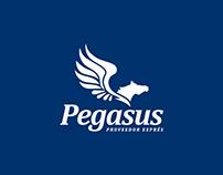 Pegasus | Proveedor Exprés