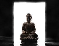 The Wise Buddha