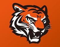 Cincinnati Bengals identity concept