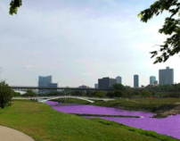 The Trinity River Purple Project: Using Diff EQ