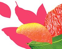 Fruits & Passion - Gamme Fruitée