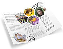 Bee The Change Brochure
