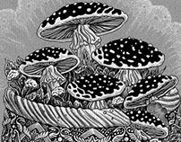 Mushroom casket