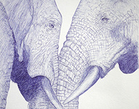 Elephants III-II