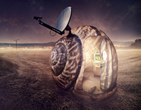 Snail.tv