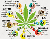 Pot Smokers Infographic