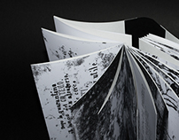 La fille sur le pont, illustration film book