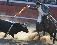 Bull Fight Actions
