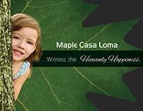 Real Estate Brochure (Maple Casa)