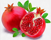 Pomegranate Fruit RnD Styles.