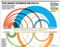 Civic Budget Infographic