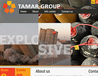 Tamar group
