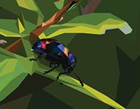 Polygonal Bug