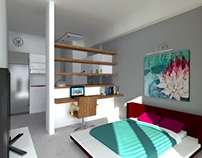 Remodeling of a 20 sq.m. apartment in Halandri (B)