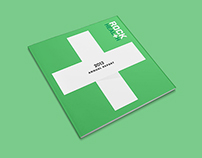 2013 Rock Health Annual Report