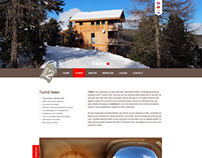 Turm2 website