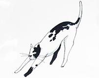 44 gatti (in fila per sei col resto di due) - Poster