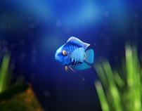 Cichlid's Aquarium