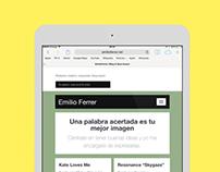 Emilio Ferrer Website