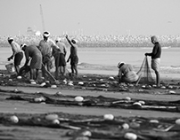 Fishermen in Fujeirah, UAE