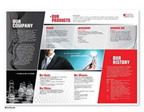 Corporate Brochure :: Extol