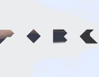 Dubrovsky logo / 2008