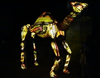 Solar Powered Lantern Camel Barefoot College Rajasthan