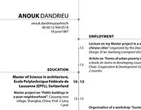 Curriculum Vitae - Anouk Dandrieu