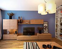 2011. The apartment interior.