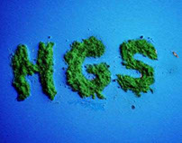 HGS Islands