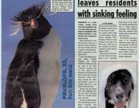 Page 3 bird - British Antarctic Survey