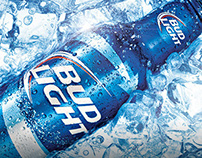Bud Light Web Proposal