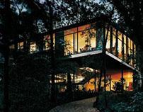 Análisis de una casa: Casa de vidrio