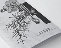 Trifold, Poster and Diploma for University of Seville