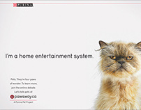 Pawsway.ca - Launch campaign - Print/Social/OOH