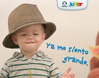 Gerber Junior