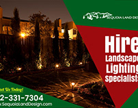 Reasons to Hire a Landscape Lighting Specialist
