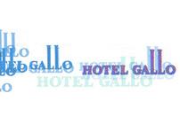 HOTEL GALLO - St. Gallen CH