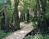 Atlantic Botanic Gardens. Gijón. Spain