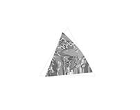 Postgraduate: Logo Animation