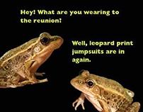 Leopard Frog Promotion