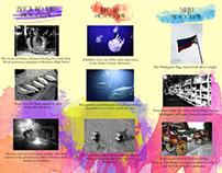 Photography Brochure Design