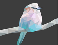 Geometric  polygon art