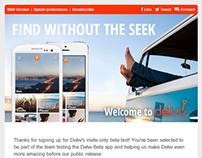 Delvv Email Campaign