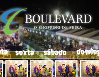 Galeria de Fotos Micareta de Feira de Santana/BA